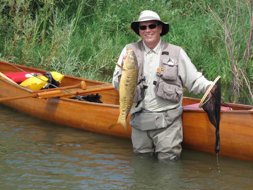 Chas Wade carp
