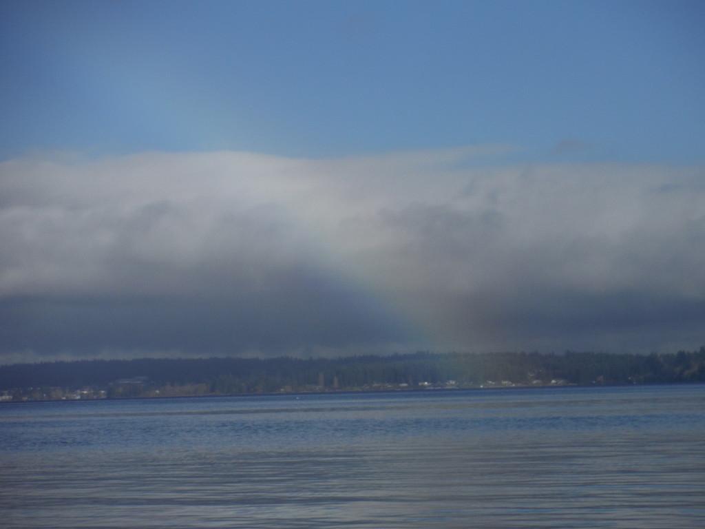 Chico Rainbow