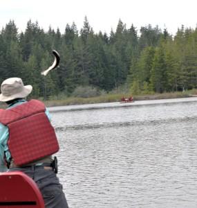 OFFC Lake Alice Flying Fish